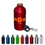 Buy Sports Bottle Aluminum Petite 17 oz
