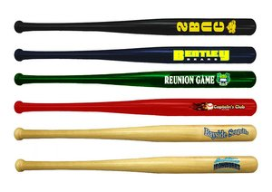 Main Product Image for Mini Baseball Bat - 18""