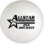 "Mini Throw Soft Vinyl Volleyball - 4.5"" -"