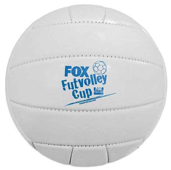 Main Product Image for Synthetic Leather Volleyball - Full Size