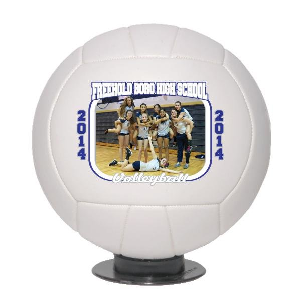 Main Product Image for Trophy Photo Volleyball - Mini Size